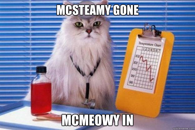 McSteamy Gone McMeowy In  Doctor Cat