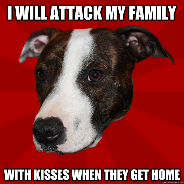 i will attack my family with kisses when they get home   Vicious Pitbull Meme