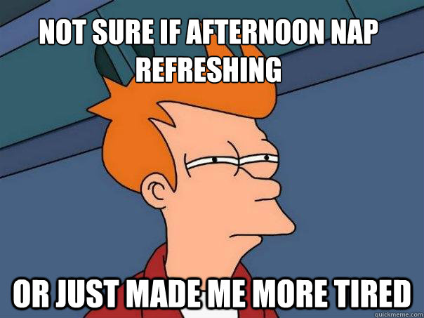 Not sure if afternoon nap refreshing Or just made me more tired - Not sure if afternoon nap refreshing Or just made me more tired  Futurama Fry
