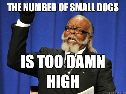The number of small dogs  Is too damn high - The number of small dogs  Is too damn high  Too Damn High Guy
