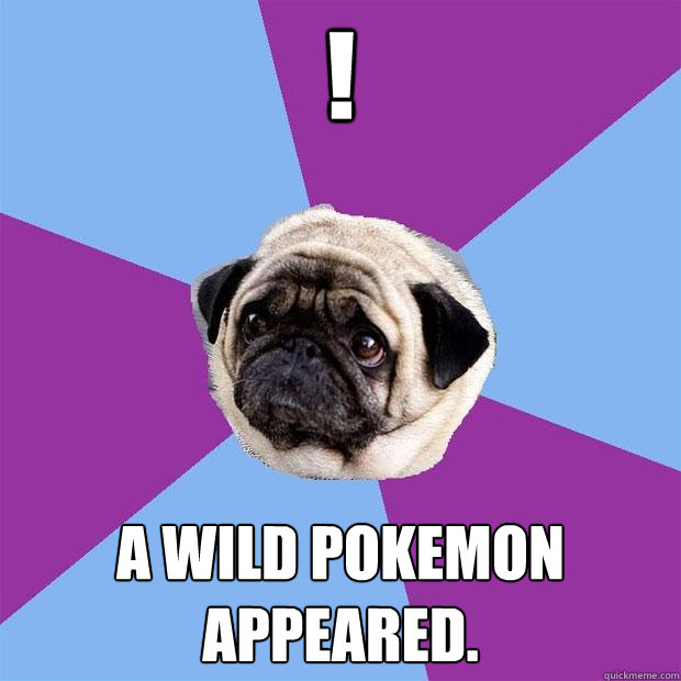 ! a wild pokemon appeared. - ! a wild pokemon appeared.  Lonely Pug