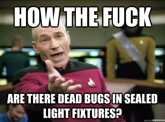 how the fuck are there dead bugs in sealed light fixtures? - how the fuck are there dead bugs in sealed light fixtures?  Annoyed Picard HD