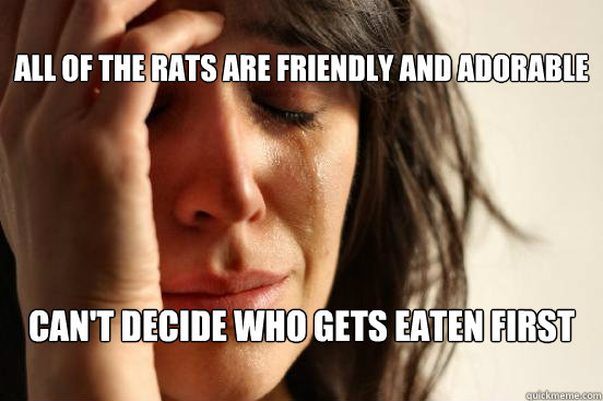 All of the rats are friendly and adorable Can't decide who gets eaten first   -  All of the rats are friendly and adorable Can't decide who gets eaten first    First World Problems