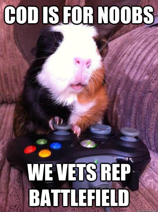 Gamer Guinea Pig memes | quickmeme
