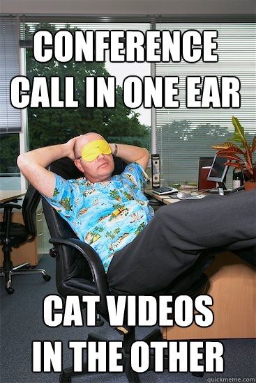 conference call in one ear cat videos  in the other  Lazy Employee