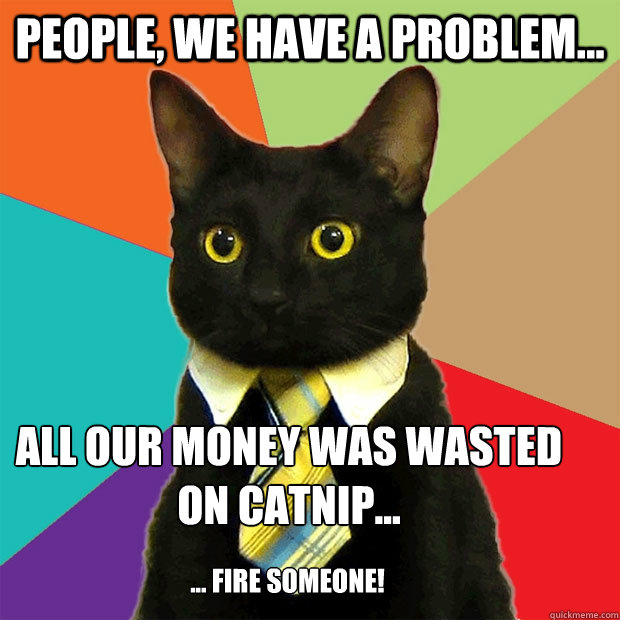 People, we have a problem... All our money was wasted on catnip...  ... fire someone!  - People, we have a problem... All our money was wasted on catnip...  ... fire someone!   Business Cat