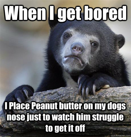 When I get bored  I Place Peanut butter on my dogs nose just to watch him struggle to get it off - When I get bored  I Place Peanut butter on my dogs nose just to watch him struggle to get it off  Confession Bear