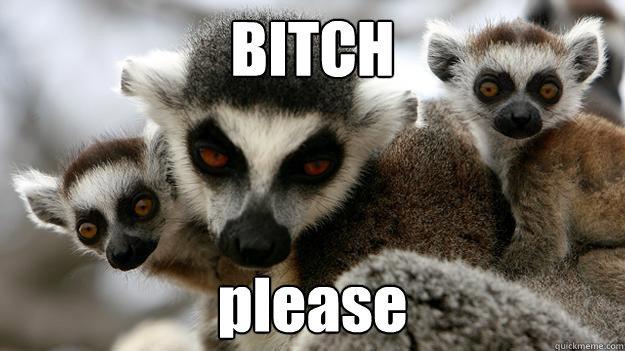 c8aa3748de6457c4c352df6a70ef3327261bf0f48886bede4e5ada959836dfab unamused lemur memes quickmeme