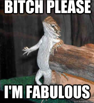 Bitch please I'm fabulous
