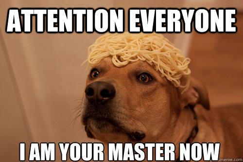 ATTENTION EVERYONE I AM YOUR MASTER NOW - ATTENTION EVERYONE I AM YOUR MASTER NOW  10 Dog
