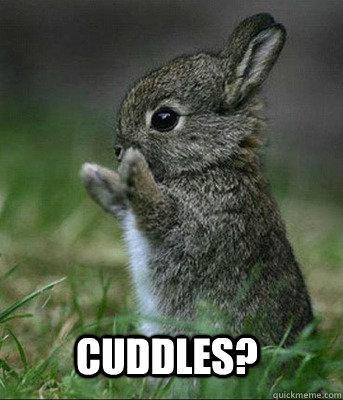 Cuddles?