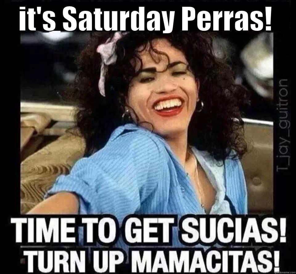 Turnt up perras - IT'S SATURDAY PERRAS!  Misc