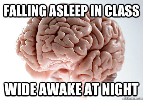Falling asleep in class Wide awake at night - Falling asleep in class Wide awake at night  Scumbag Brain