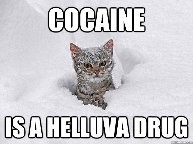 COCAINE IS A HELLUVA DRUG