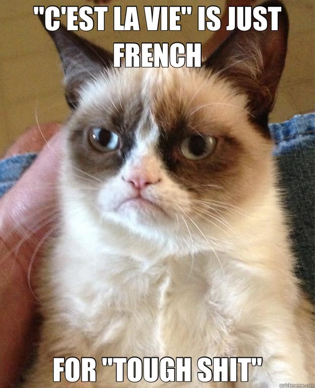 Image result for c'est la vie meme