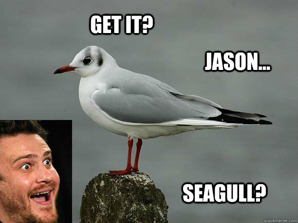Get it? Jason... Seagull? - Get it? Jason... Seagull?  Jason Seagull