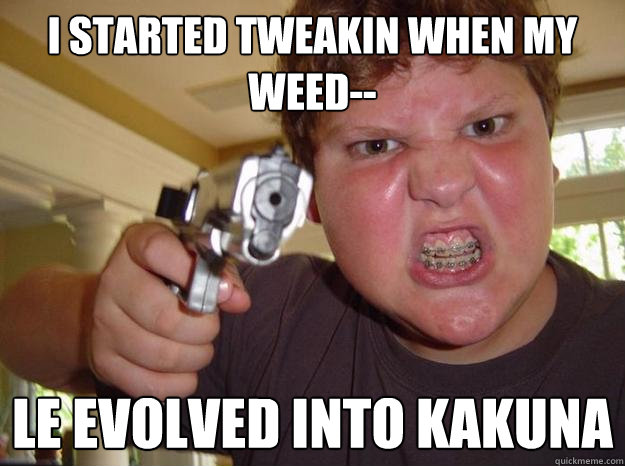 I started tweakin when my weed-- le evolved into Kakuna