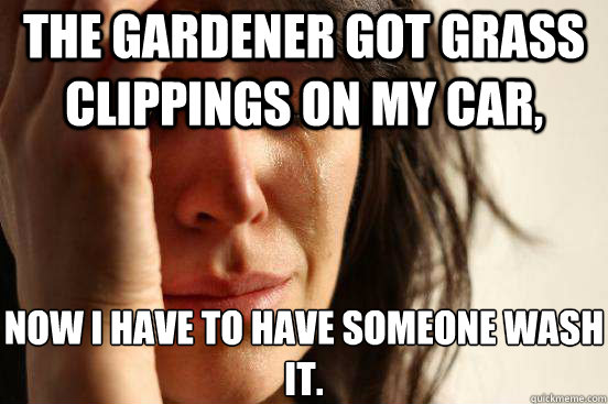 The gardener got grass clippings on my car, Now I have to have someone wash it. - The gardener got grass clippings on my car, Now I have to have someone wash it.  First World Problems