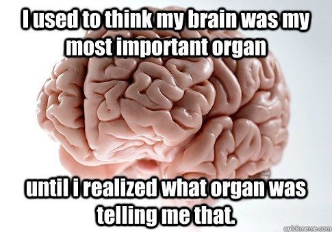 I used to think my brain was my most important organ until i realized what organ was telling me that. - I used to think my brain was my most important organ until i realized what organ was telling me that.  Scumbag Brain