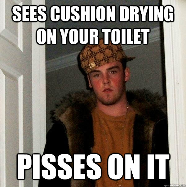 sees cushion drying on your toilet pisses on it - sees cushion drying on your toilet pisses on it  Scumbag Steve