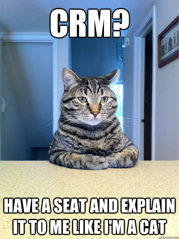 CRM? Have a seat and explain it to me like I'm a cat - CRM? Have a seat and explain it to me like I'm a cat  Chris Hansen Cat