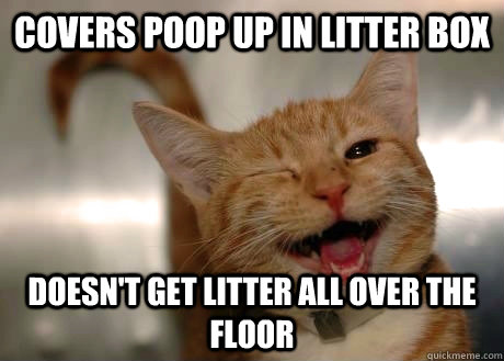 covers poop up in litter box  doesn't get litter all over the floor