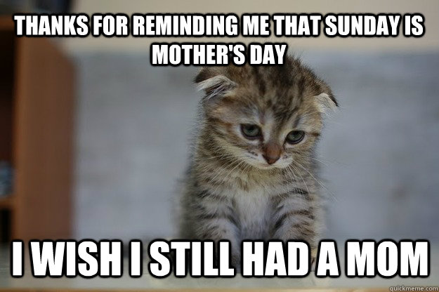 thanks for reminding me that sunday is mother's day i wish i still had a mom