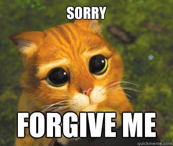 SORRY FORGIVE me