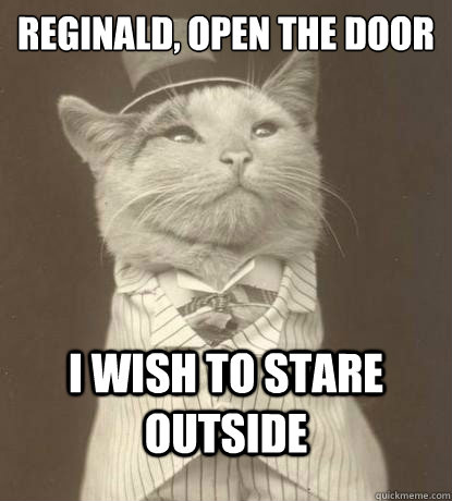 Reginald, Open the door I wish to stare outside  - Reginald, Open the door I wish to stare outside   Aristocat
