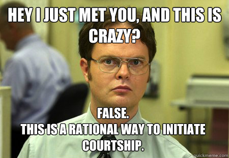 Hey I just met you, and this is crazy? False.  This is a rational way to initiate courtship. - Hey I just met you, and this is crazy? False.  This is a rational way to initiate courtship.  Dwight