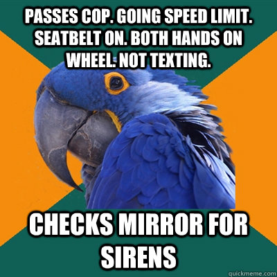 Passes Cop. Going speed limit. seatbelt on. both hands on wheel. not texting. Checks mirror for sirens - Passes Cop. Going speed limit. seatbelt on. both hands on wheel. not texting. Checks mirror for sirens  Paranoid Parrot