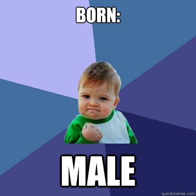 Born: Male - Born: Male  Success Kid