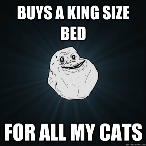 c9b8a1b6cd7006097a30aefd73e93f4109f8e23a92aa2bbe65f2f6f4872ecc7c buys a king size bed for all my cats forever alone quickmeme