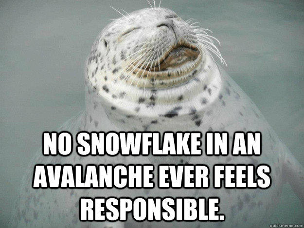 No snowflake in an avalanche ever feels responsible.  Zen Seal