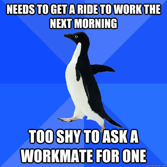needs to get a ride to work the next morning too shy to ask a workmate for one - needs to get a ride to work the next morning too shy to ask a workmate for one  Socially Awkward Penguin