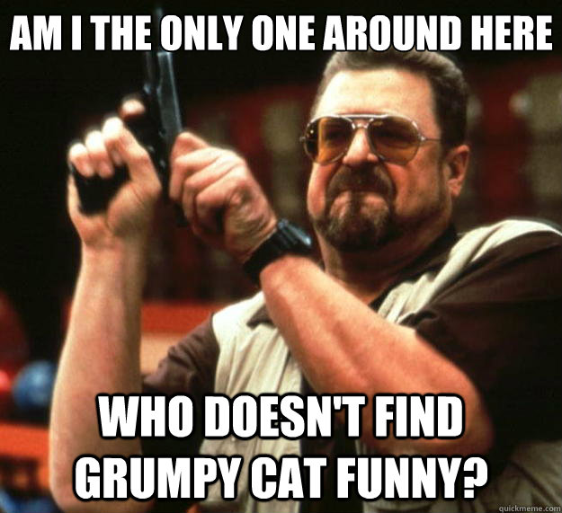 Am I the only one around here who doesn't find grumpy cat funny? - Am I the only one around here who doesn't find grumpy cat funny?  Big Lebowski