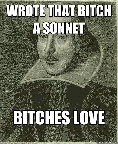 wrote that bitch a sonnet bitches love sonnets