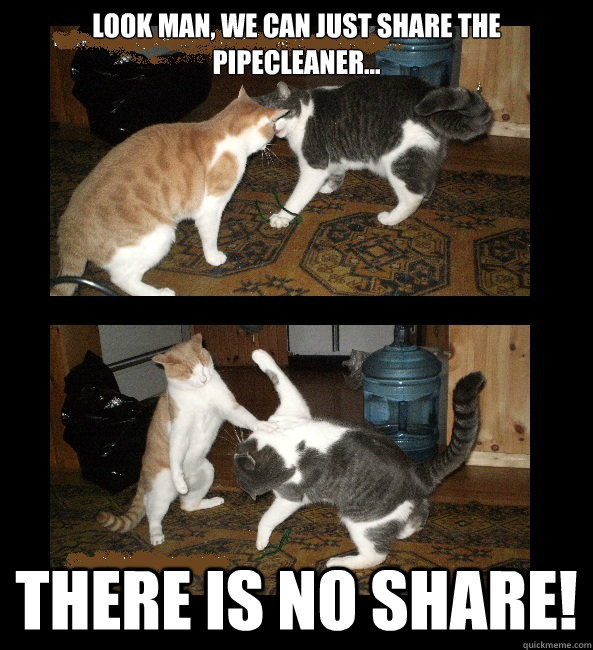 Look man, we can just SHARE the pipecleaner... There is no share! - Look man, we can just SHARE the pipecleaner... There is no share!  There is no share