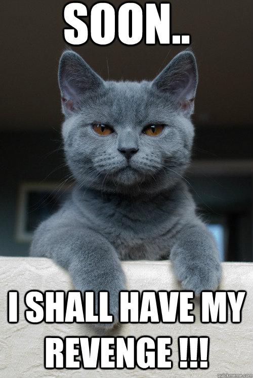 soon.. I shall have my Revenge !!!
