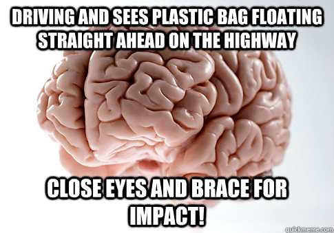Driving and sees plastic bag floating straight ahead on the highway CLOSE EYES AND BRACE FOR IMPACT! - Driving and sees plastic bag floating straight ahead on the highway CLOSE EYES AND BRACE FOR IMPACT!  ScumbagBrain