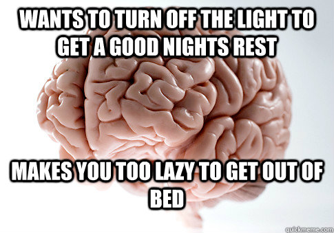 Wants to turn off the light to get a good nights rest Makes you too lazy to get out of bed - Wants to turn off the light to get a good nights rest Makes you too lazy to get out of bed  Scumbag Brain
