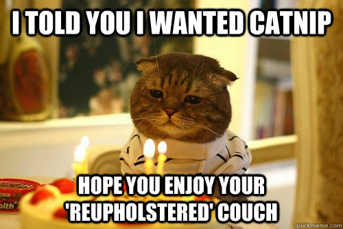 I told you I wanted catnip hope you enjoy your 'reupholstered' couch - I told you I wanted catnip hope you enjoy your 'reupholstered' couch  Dissapointed Birthday Cat