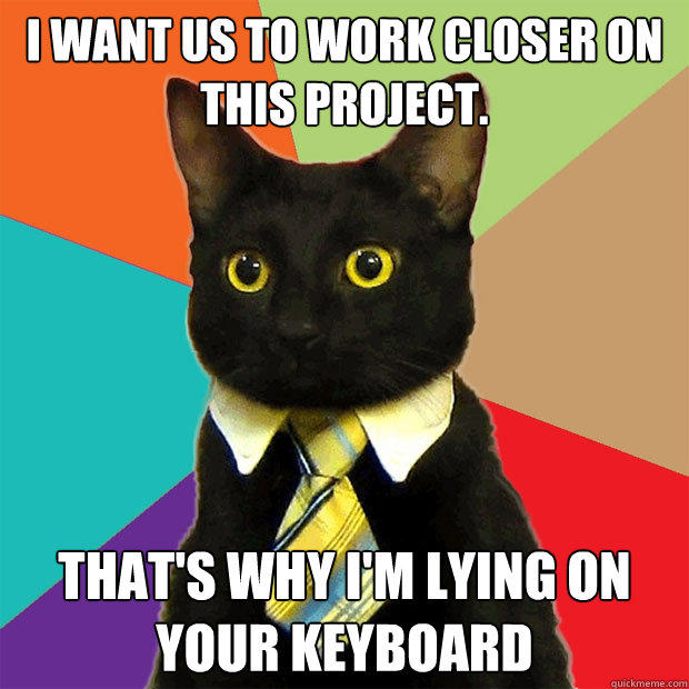 I want us to work closer on this project. That's why I'm lying on your keyboard - I want us to work closer on this project. That's why I'm lying on your keyboard  Business Cat