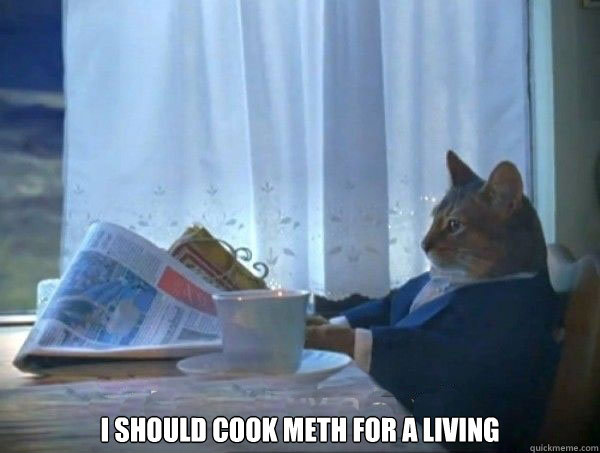 I should cook meth for a living -  I should cook meth for a living  morning realization newspaper cat meme