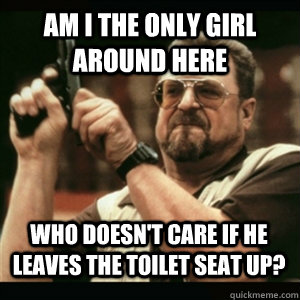 Am i the only girl around here Who doesn't care if he leaves the toilet seat up?
