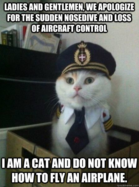LADIES AND GENTLEMEN, WE APOLOGIZE FOR THE SUDDEN NOSEDIVE AND LOSS OF AIRCRAFT CONTROL I am a cat and do not know how to fly an airplane. - LADIES AND GENTLEMEN, WE APOLOGIZE FOR THE SUDDEN NOSEDIVE AND LOSS OF AIRCRAFT CONTROL I am a cat and do not know how to fly an airplane.  Captain kitteh