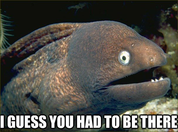 I guess you had to be there -  I guess you had to be there  Bad Joke Eel