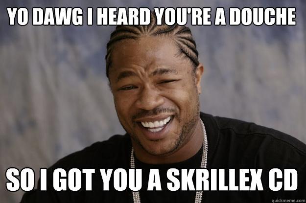 Yo dawg I heard you're a douche So I got you a skrillex cd  Xzibit meme