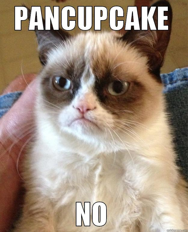 WHAT THE HELL IS - PANCUPCAKE NO Grump Cat