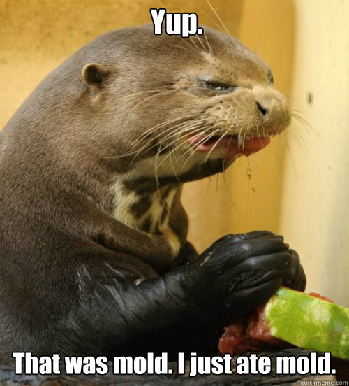 That was mold. I just ate mold. Yup.